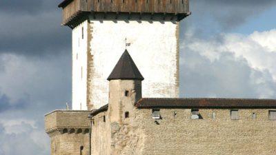 """Giidiga jalgsituur """"Kuningate linn"""" Vana Narva tänavatel"""