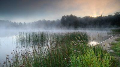 Alutaguse Kurtna järvestiku järv