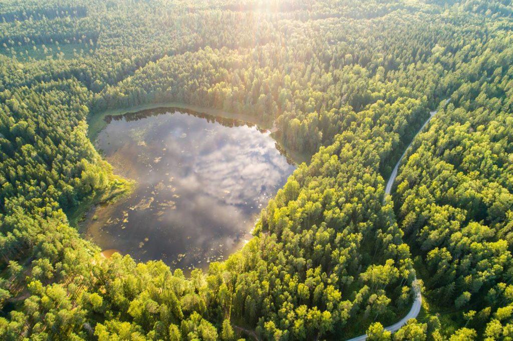 Kurtna järvestik