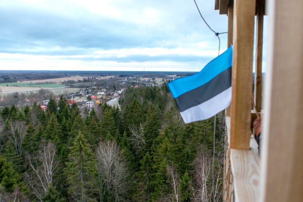 Vaade Iisaku Tärivere mäelt tornist