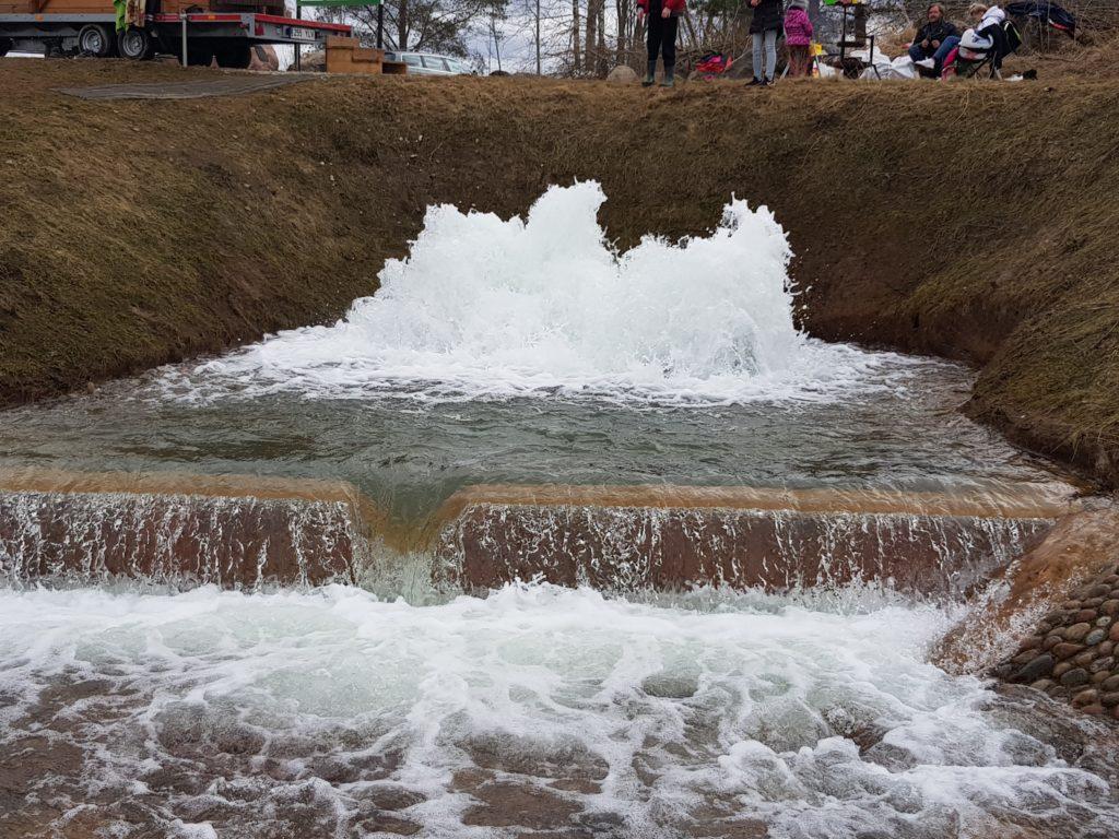 Ratva nõiakaev kevadise suurvee ajal