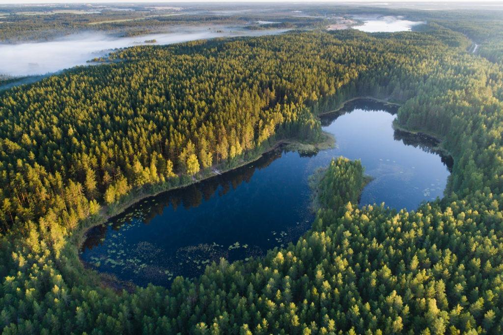 Kurtna järvestik ülevalt linnulennult