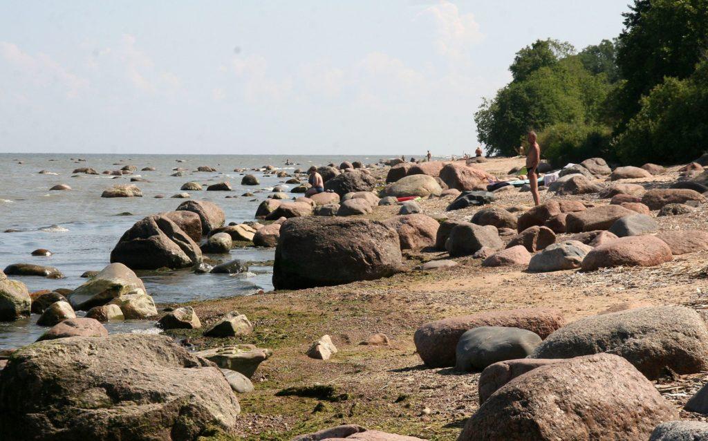 AA rand, ristsõnades palju küsitud AA